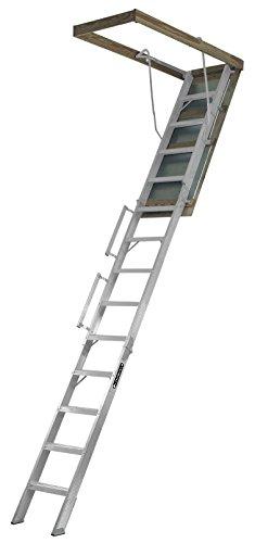 Louisville Ladder 22.5-Inch by 63-Inch...