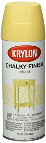 Krylon K04114000 Chalky Finish Spray Paint,...
