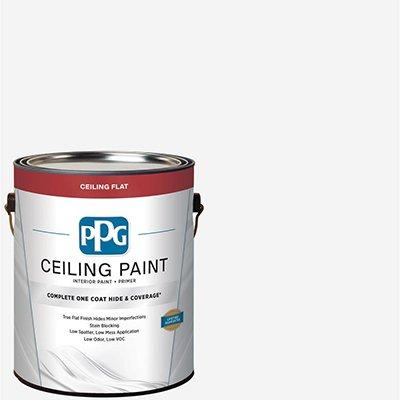 PPG Ceiling Paint